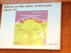 Impact of sea level rise on the Nile Delta